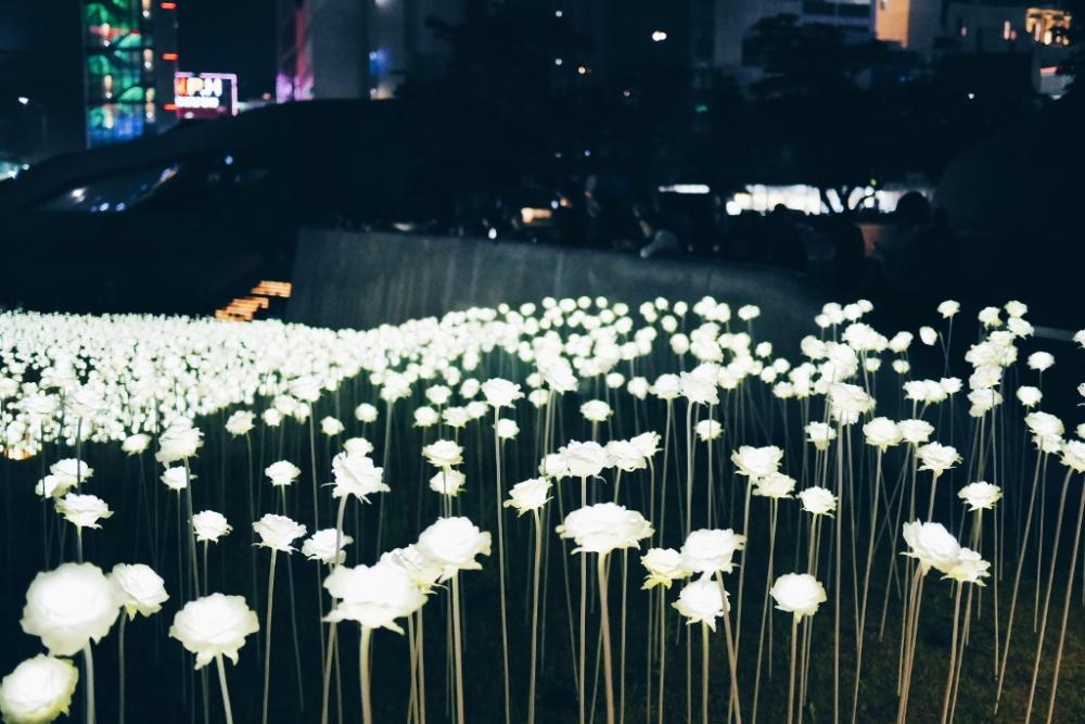 Dongdaemun Design Plaza (동대문디자인플라자), Seoul.