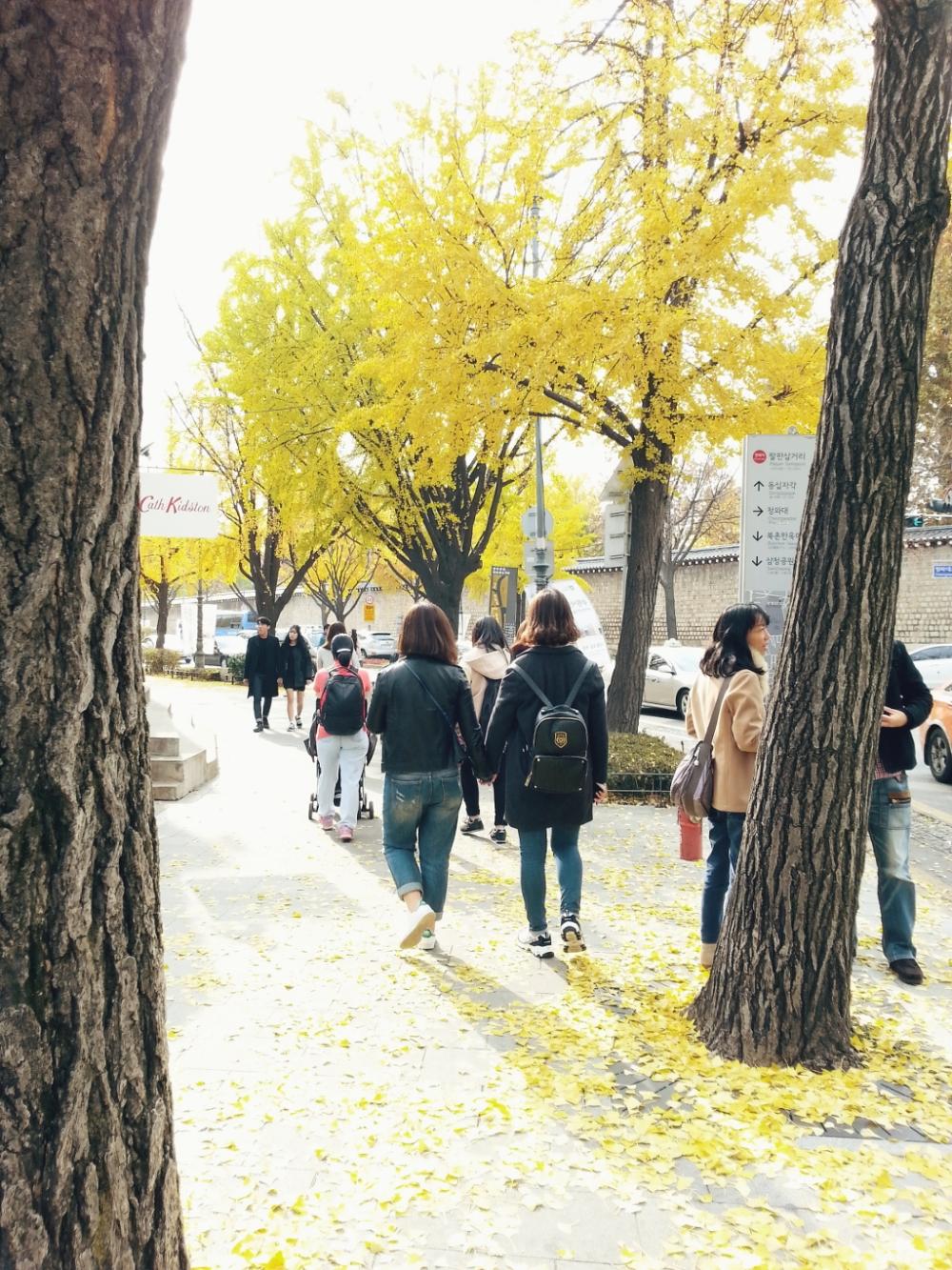 Travel Photographer | Autumn Samcheongdong (삼청동) Seoul South Korea