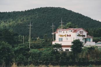 Travel Photographer | B&B Guesthouse in Jeju (뱅디가름 게스트하우스 ) South Korea