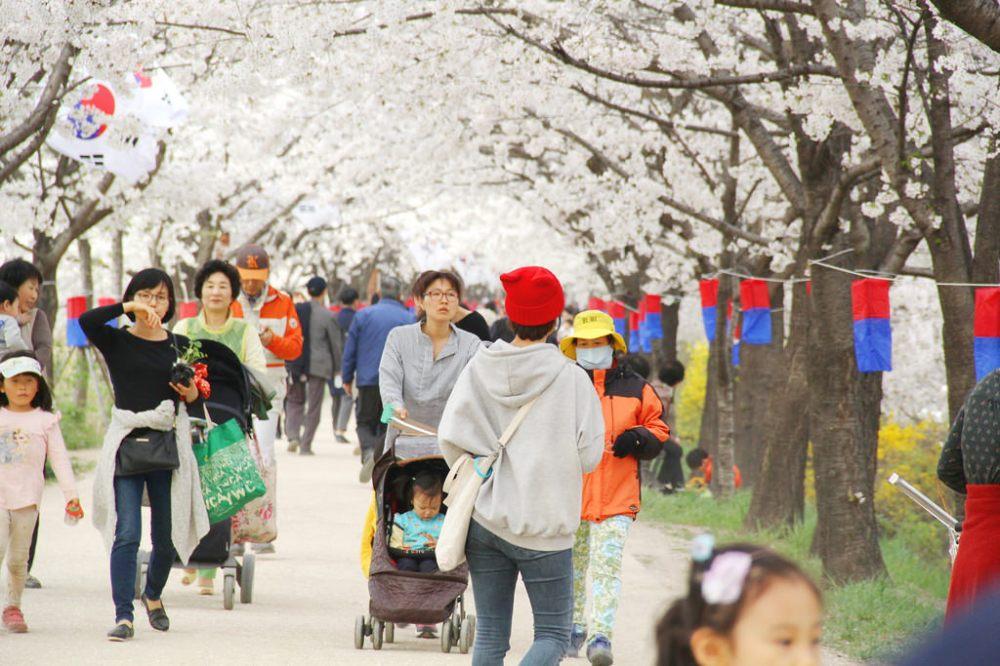 Yeongdeungpo Riverside Trail (영등포수변둘레길)