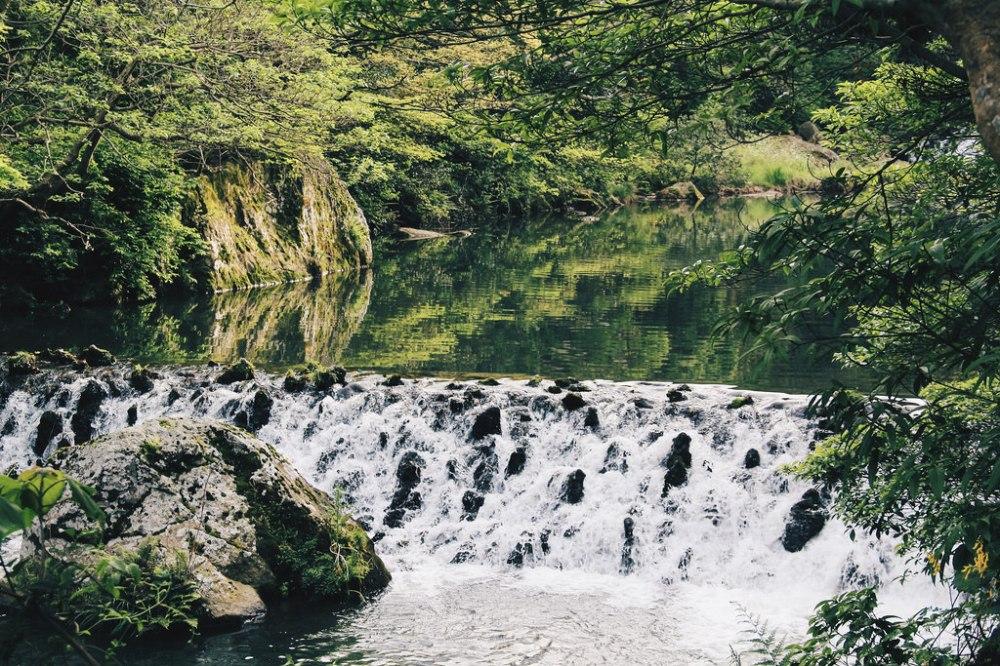 Travel Photographer   Cheonjiyeon Falls (천지연폭포) Jeju South Korea