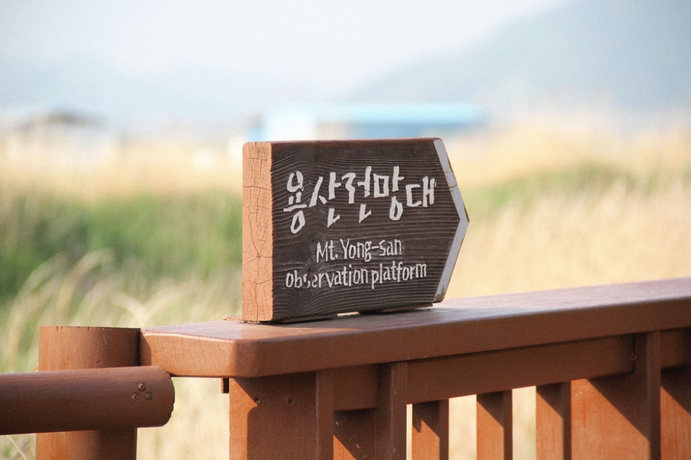 Mt. Yong-san Observation Platform at Suncheonman Bay Wetland Reserve, South Korea.