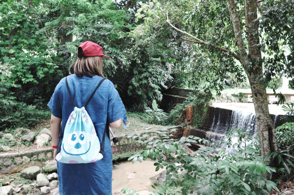 Travel Photographer   Botanical Gardens Penang Malaysia