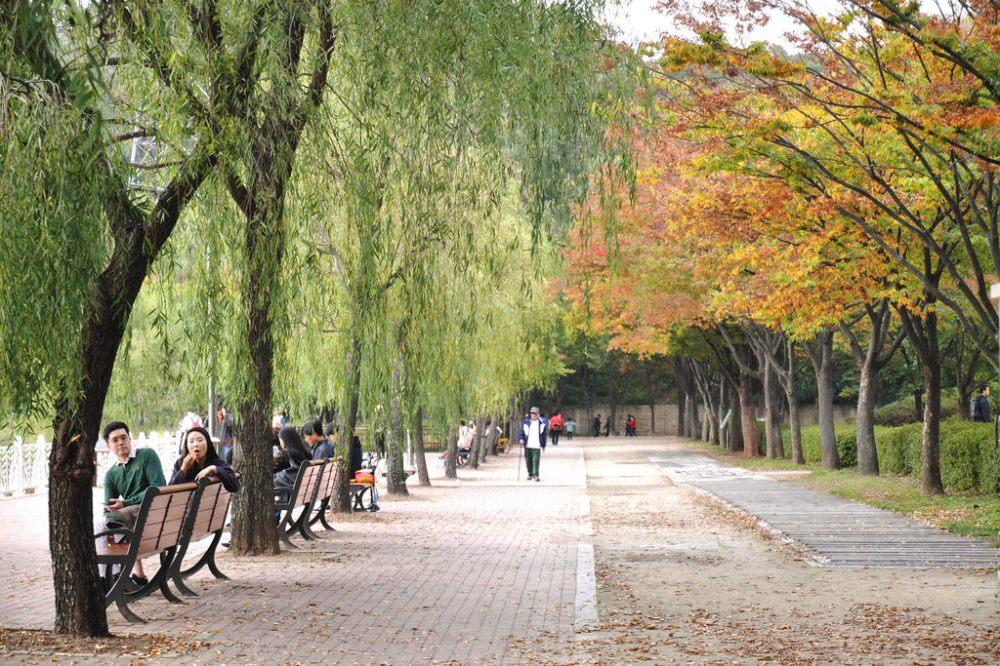 Travel Photographer | Autumn Incheon Grand Park (인천대공원) South Korea