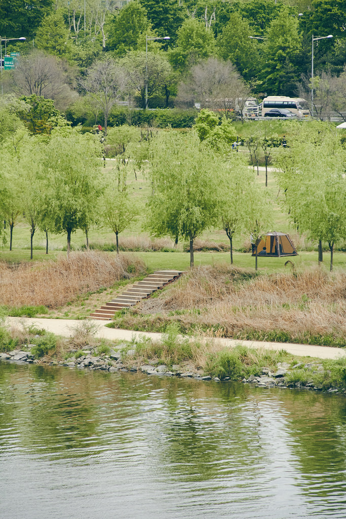 Travel Photographer | Spring at Seonyudo Park Seoul South Korea